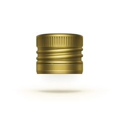 Screw Bottle Cap Isolated on Background vector