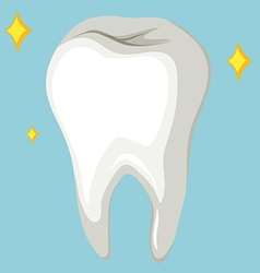 Single human tooth on blue background vector image