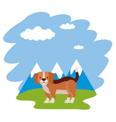 Beagle dog grass mountains landscape vector