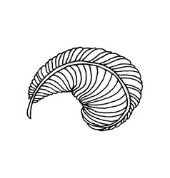Hand drawn feather vector
