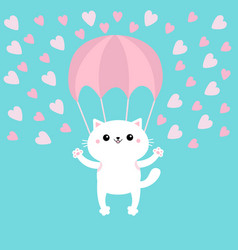 Happy valentines day cat skydriver flying vector