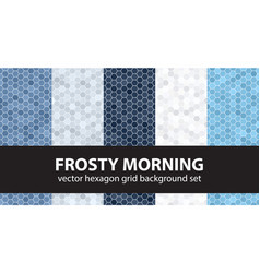 hexagon pattern set frosty morning seamless vector image