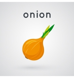 Onion isolated on light background vector
