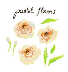 Pastel Flowers vector image