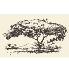 Romantic tree with bench drawn sketch vector