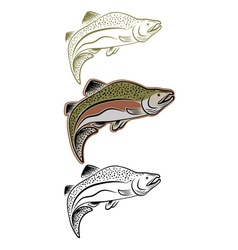 set of jumping salmon vector image