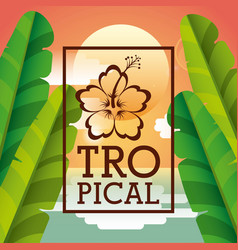 tropical frame design vector image