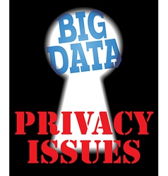Big Data privacy security IT issues vector image