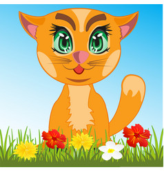 cat in herb vector image