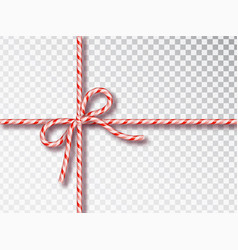 christmas candy gift tying isolated blank vector image