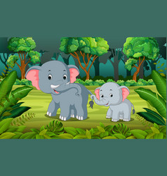 elephant and baby elephant in the forest vector image