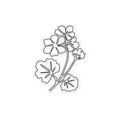 one single line drawing beauty fresh geranium vector image