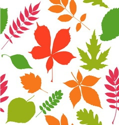 Seamless pattern background Autumn leaves vector
