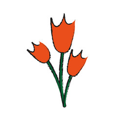 wild flower tulips icon image vector image