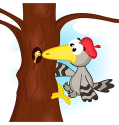 woodpecker on tree vector image