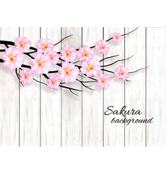 abstract spring background with a pink blossoming vector image