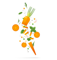 flying fresh carrots and spices concept vector image