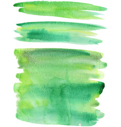 Green paint strokes vector