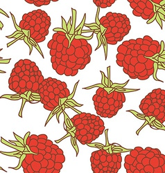 ripe raspberry seamless pettern isolated on white vector image vector image