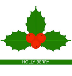 holly berry isolated vector image
