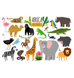 African animals various wildlife animals of vector