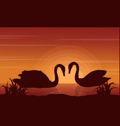 Beauty landscape swan on lake silhouettes vector