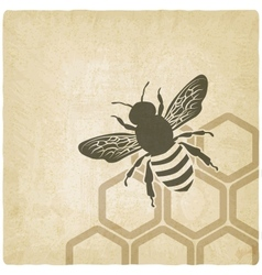 Bee old background vector