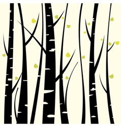 Birch three vector image