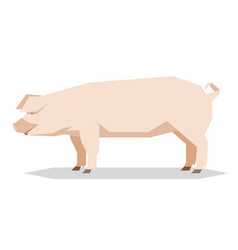 flat geometric yorkshire pig vector image