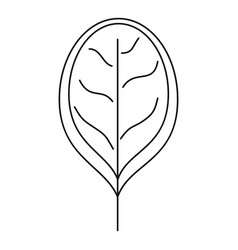 fresh leave spinach icon outline style vector image
