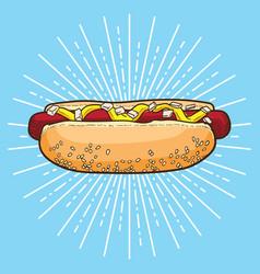 hotdog hand drawn hot dog hot dog poster vector image