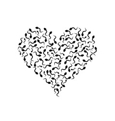 sperm in the shape of heart vector image