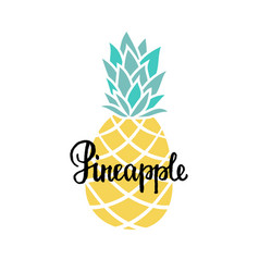 summer background with hand drawn pineapple and vector image