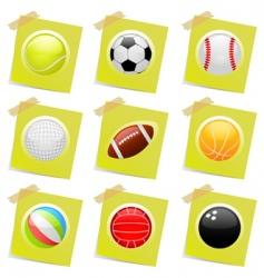 sports ball vector image vector image