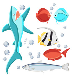 cartoon style fish and water bubbles shark vector image vector image
