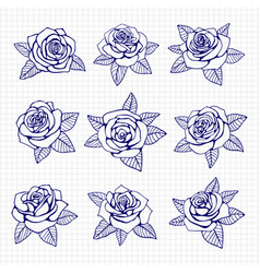 Ballpoint pen drawing roses set vector