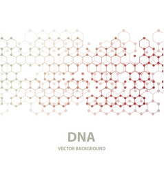 Dna structure double helix on white background vector