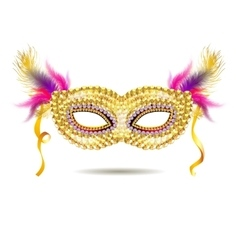 Gold venetian carnival mask with feathers vector