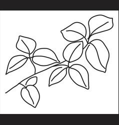 Linden leaf in doodle style vector