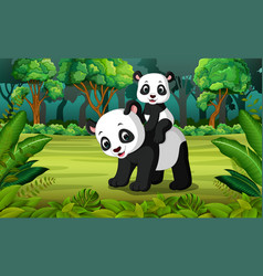panda with baby panda in the forest vector image