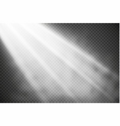white glowing lights effects isolated on vector image
