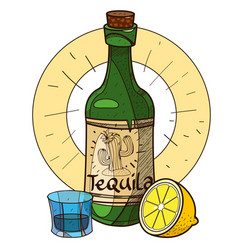 Bottle of tequila and lemon alcohol vector