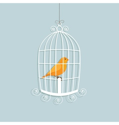 Caged canary vector