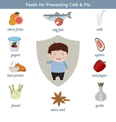 Foods for preventing cold and flu vector image
