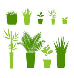 green silhouette or contour houseplant pot set vector image