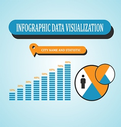 Infographic Data Visualization vector image