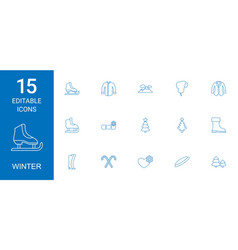 15 winter icons vector