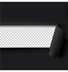 Black torn paper background with empty space for vector image