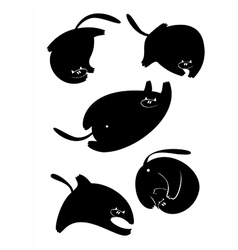 Fat Cats vector