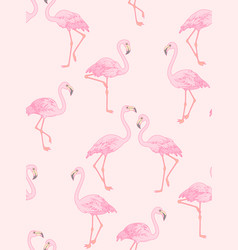 flamingo on pink vector image